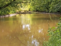 Lake Fork Mohican River