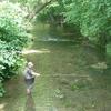 Yellow Breeches Creek