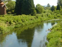 Sammamish River