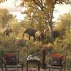 3-Day Kruger National Park Luxury Safari from Johannesburg