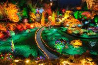 Butchart Gardens Holiday Lights Tour Photos