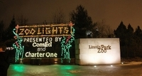 Chicago Holiday Lights Trolley and Christmas Market Tour Photos