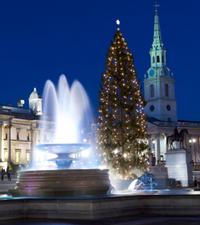 Christmas Eve Lights Tour in London Led by Santa  Photos