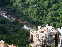 4-Day Kruger National Park Safari Tour from Johannesburg: Game Drives and Wilderness Walks