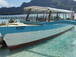 Bora Bora Snorkel, Sharkfeeding and Lagoonarium Full-Day Tour including Picnic Lunch Photos