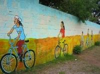 Johannesburg Tour: Apartheid Museum, Carlton Centre Observation Deck and Soweto Bike Ride Photos