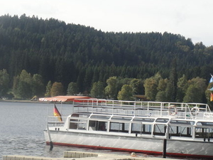 Black Forest and Rhine Falls Day Trip from Zurich Photos