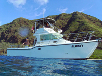 Private Eco-Tour: Snorkeling and Wildlife-Viewing Yacht Cruise from Waianae  Photos