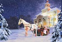 The Carolina Opry Christmas Special Photos