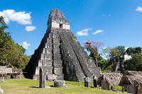 Tikal Day Trip from San Ignacio