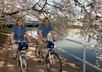 Viator Exclusive: Mt Vernon Trail and Washington DC Cherry Blossom Bike Tour from Alexandria Photos
