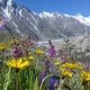 Biafo Hispar & Snow Lake Trek