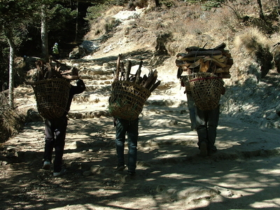 People Getting Wood For Their Homes Around Tengboche
