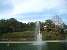Bhubing Palace View
