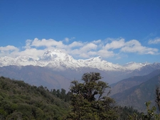 Poon Hill View