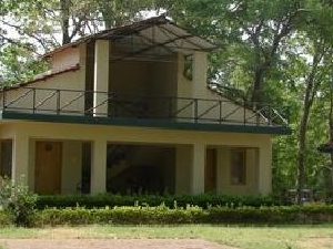White Tiger Forest Lodge