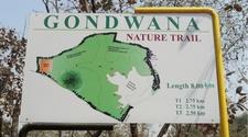 Gorewada Biopark Map