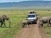 Maasai Mara Camping Safari