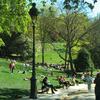 The Parc Des Buttes Chaumont