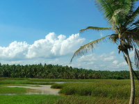 Johnson.p's Outingkerala Tour Package