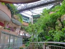 Rainforest Precinct Of 1 Utama Shopping Mall