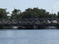 Nieve Reed oscilación del puente