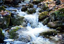 Bruce Trail River