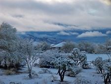 Oro Valley Snowfall
