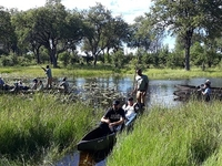 Mokoro Excursion Activity - for 2 Hours in Khwai Area