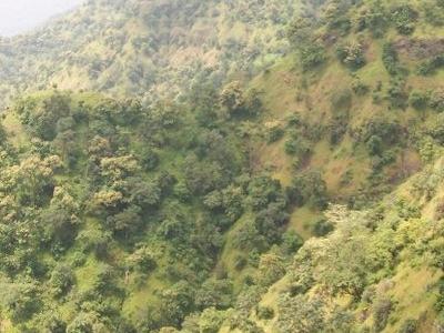 View Of Chikhaldara