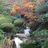 Hotaru-Sawa Stream