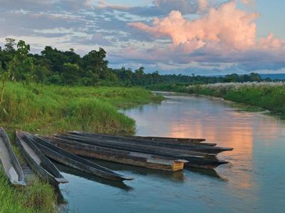 Dugout Boats At Chitwan National Park