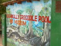 Kachikally Museum and Crocodile Pool