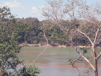 Lethem, Looking Across The Takutu River Into Brazil