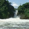 Tour to Murchison Falls National Park