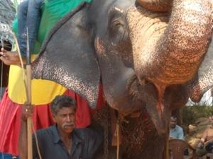 Chami Tour in Srilanka Photos