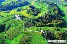 Sloveniaimages