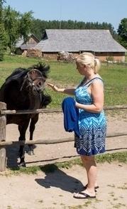 Horse Museum