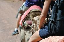 16817872 Chica Montar Un Camello En El Desierto De Marruecos Africa Con Otras Personas Borrosas