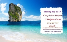 Dolphin Cruise-Big Promotion-2D1N