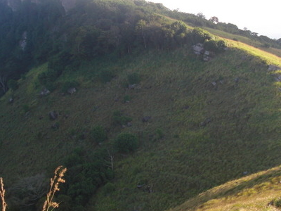 Hanthana Conservation Forest