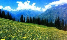 Images Of Kashmir