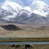 The Kongur Tagh Range