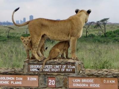 Nairobi Park 2