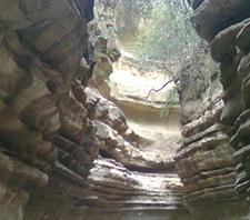 Hells Gate Wonders