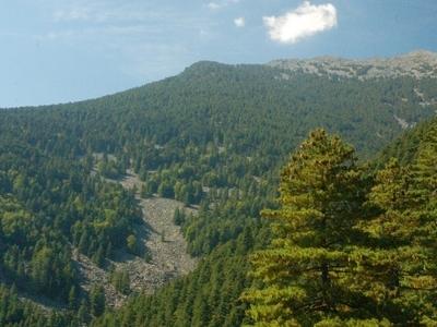 Pelister Mountain