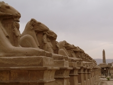 Real Egypt School Trips 63