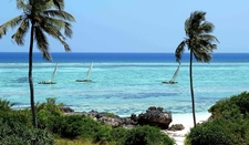 Tanzania Sea Coast Tourism Beach