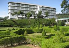 Tea Factory Hotel 1