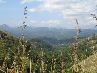 A View From Hanthana